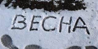 21 квітня на Черкащині очікується сильний мокрий сніг, уночі заморозки