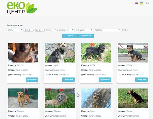У Черкасах створили сайт для пошуку господарів безпритульним тваринам