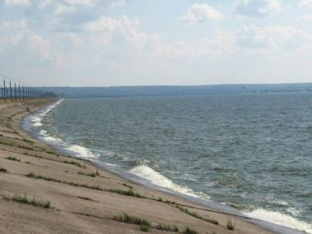 Держрибагентство: У Канівське водосховище випустять понад 3 тонни риби